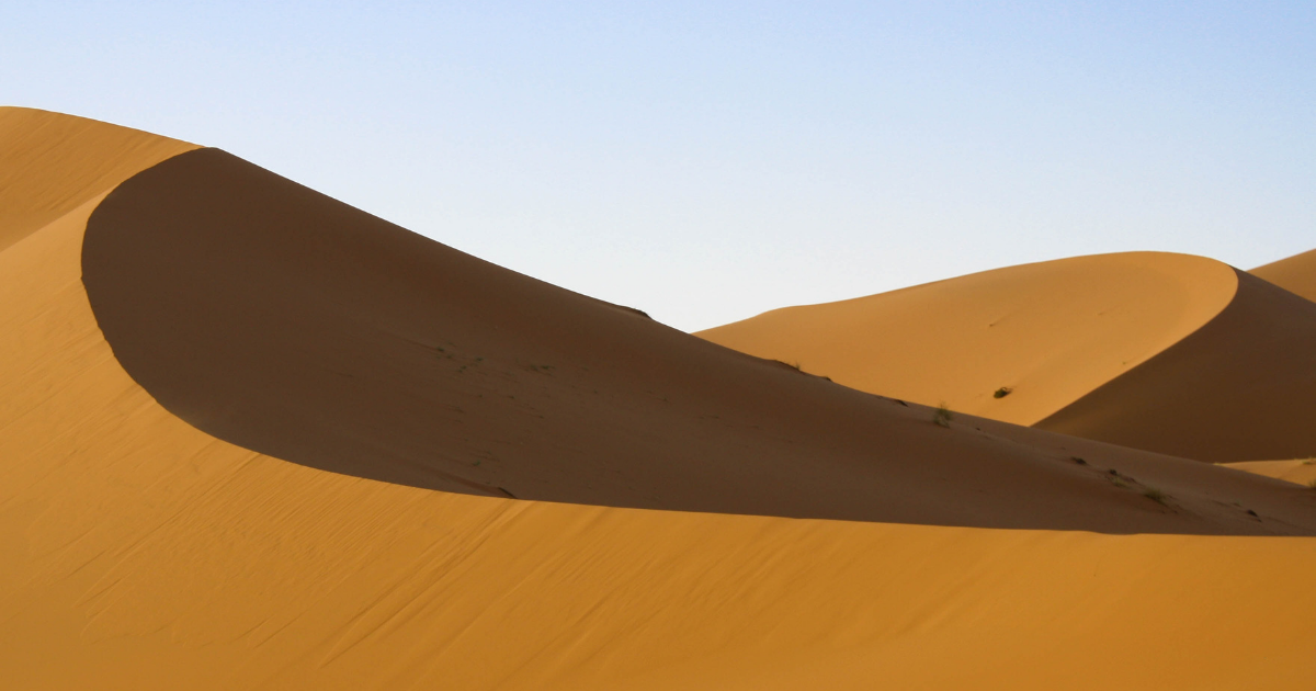 The dunes of the Sahara Desert
